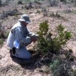 Collecting vegetation samples