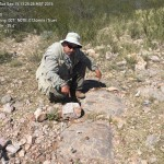 20. Niton geochem – green copper oxide broken from Niton anomaly Jay Crawford points to exposed copper from breccia pipe  his L hand indicates source Sept. 2015